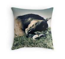 2.6.2010: Pony Dreams Throw Pillow