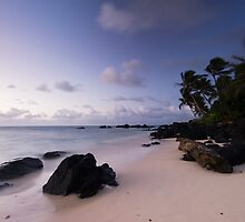 Winds of Rarotonga by Michael Treloar