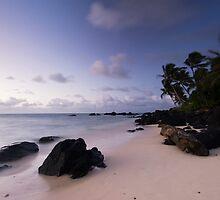 Winds of Rarotonga by Michael Treloar
