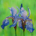 Iris Blue Tiger by lanadi