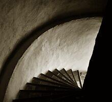 steep steps R pests by ragman