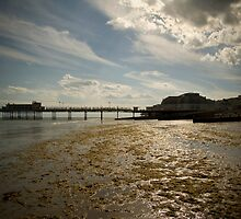 Pier into the distance by Ben Porter