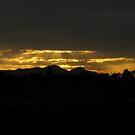 Good Morning Sunshine by PhoenixArt