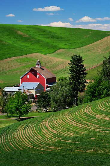 Palouse Red Barn by Inge Johnsson