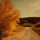 Old Ranch Road by Suzanne Cummings