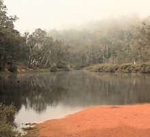 Misty Morning, Bridgetown, WA by Elaine Teague