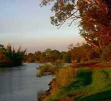 Sunsetting on the banks of the Mitchell River by Chris Chalk