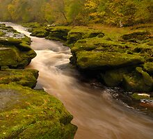 The Strid, Bolton Abbey, Wharfedale, Yorkshire Dales by James Paul
