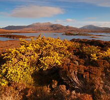 Loch Druidibeag Nature Reserve, South Uist, Scotland by James Paul