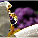 ~ Jewels in a Bubble ~ by Brenda Boisvert