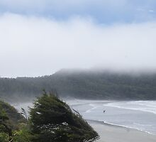 Cox Beach, Pacific Rim National Park by Brian Middleton