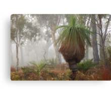 A Cold Winter Morning Canvas Print