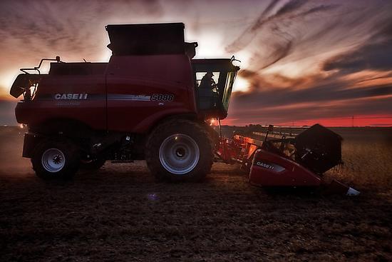 Sunset Harvesting by Studio601