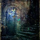 Where Butterflies Roam At Night by Vanessa Barklay