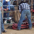 Rodeo Deniliquin 2008 by Cathy McAdie