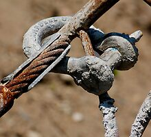 Cement Contraption by Lynn Wiles