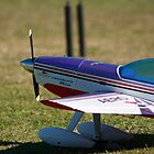 RC Plane by jaskel