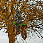 Dirty Pic 4 in the trees by caafephoto