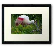 Hello! Welcome to my world!  Framed Print