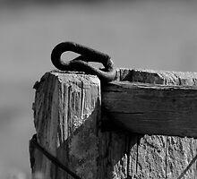 The Fence Post by AlexKokas