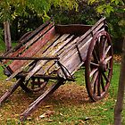 old cart by Deb Gibbons