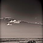 Walking by Kili - Amboseli National Park - Kenya by Scott Ward