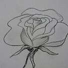 Drawing day - doodle rose by Anna D'Accione