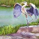 Great Blue Heron  by Joan A Hamilton