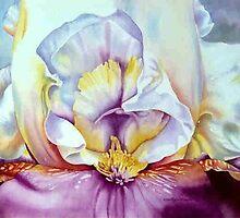 Iris by Martha  Hayes