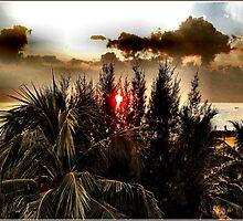 SRI LANKAN SUNSET. by ronsaunders47