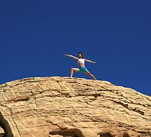 Mountain Top Warrior by smw24