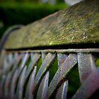Bench by rokudan
