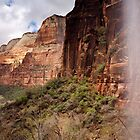 Zion Canyon in Zion National Park by cavaroc