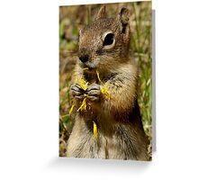 Dandelion Delight #2 Greeting Card