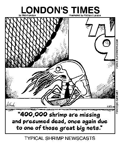 Typical Shrimp Newscasts: By Londons Times Cartoons by Rick  London