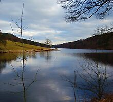 Ladybower Reservoir by Anthony Gale