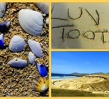 Luskentyre Beach Treasures by ©The Creative  Minds