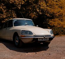 Citroen DS by David J Knight