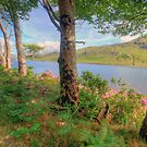 Scenic Connemara lake by John Quinn
