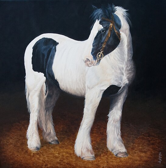 Heavy Stallion-Glin Fair by Pauline Sharp