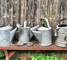 From The Garden....Watering Cans by SharonAHenson