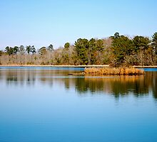 Lake Marion by imagetj