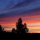 Breaking Dawn by Luís Lajas
