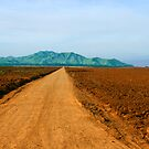 dirt road by Jim  Paredes