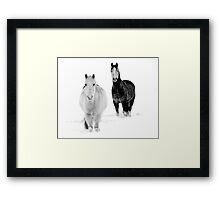 After the Blizzard 16 B&W Framed Print
