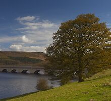 Ladybower Reservoir by Nick Atkin