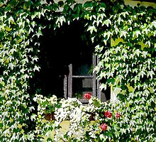 Fairytale Window by Caroline  Lembke