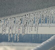 Icicle Lights by MaryGerken