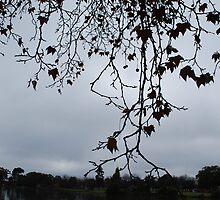 The Overhang by Lozzar Landscape