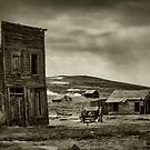 Bodie in Mono by Barbara  Brown